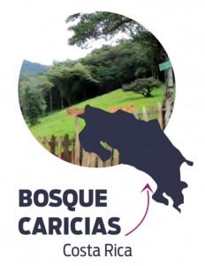 Bosque Caricias