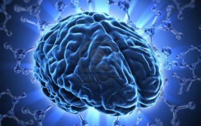 7 ejercicios para la memoria que permiten aprovechar el potencial del cerebro