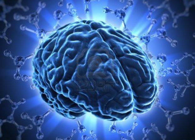5 consejos para fortalecer la memoria y cuidar la salud del cerebro