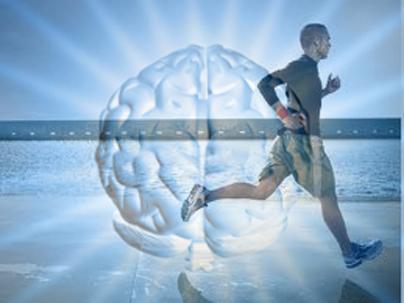 Cómo unos electrodos en el cerebro pueden ayudar a tratar el peso y la depresión