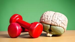 ejercicio-inteligencia
