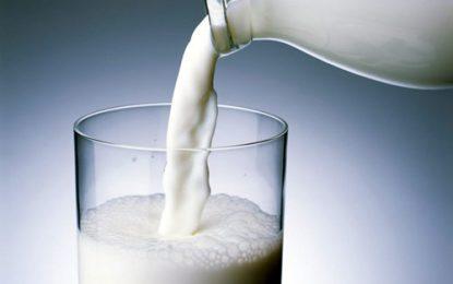 El riesgo de dejar de consumir lácteos antes de los 25 años