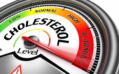Seis alimentos que le ayudarán a reducir el colesterol malo