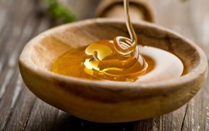 """Conoce las """"mieles"""" vegetales más beneficiosas para tu salud"""