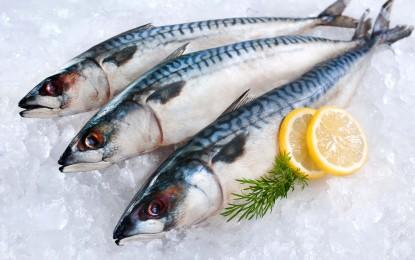 7 consejos para una adecuada manipulación de pescado y mariscos