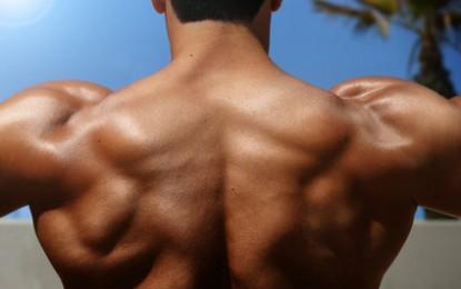 Ejercite el trapecio, uno de los músculos más importantes y olvidados
