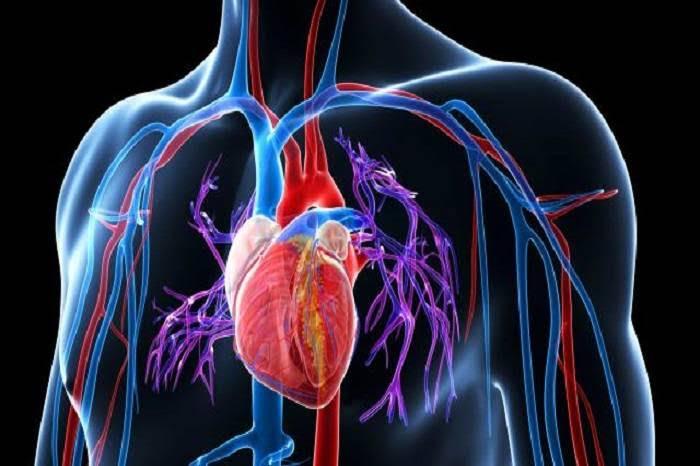Un mes antes de que sufras un infarto, tu cuerpo te previene con estos síntomas