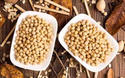 Incorpore más proteína vegetal en su dieta, con la soya