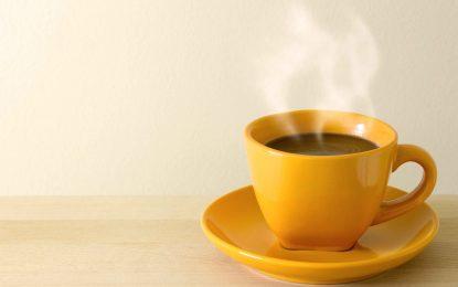 ¿Cómo contribuye el café a mi organismo?