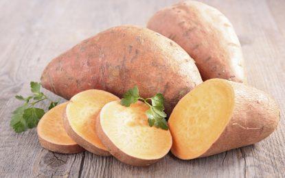 Comer más batata puede hacer que viva 100 años