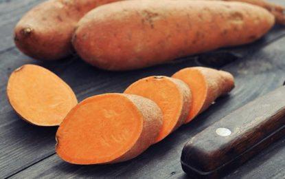 Cómo integrar el camote en su dieta y cuáles son sus beneficios