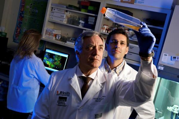 Prueba con células madre en enfermos de covid-19 muestra resultado alentador