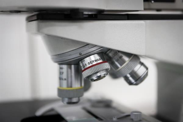 Identifican vulnerabilidades clave del cáncer mediante análisis de Big Data